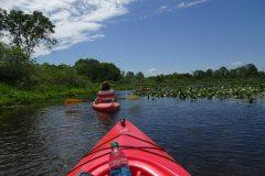Kayaking-1024x768